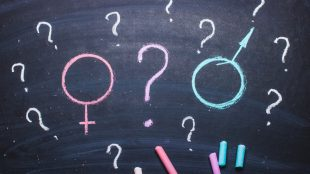 """Chalkboard showing the """"female"""" symbol in pink and """"male"""" symbol in blue, with both symbols surrounded by question marks"""